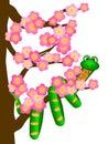 Čínština nový had na třešeň květ strom