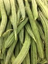 Chinese Okra Royalty Free Stock Photo