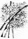 Chinese painting bamboo on paper Royalty Free Stock Image