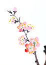 Chinese painting of flowers, plum blossom Royalty Free Stock Photo