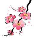 Čínština maľovanie z