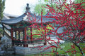 Chinese pavilion and plum flowers the traditional in the longtanhu park at beijing Stock Photography