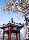 Chinese pavilion in winter Royalty Free Stock Photo