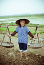 Chinese peasant working on the rice field Royalty Free Stock Photography
