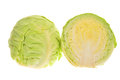 Chinese peking cabbage isolated on white background Royalty Free Stock Photo