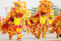 Chinese people playing lion dance Royalty Free Stock Photo