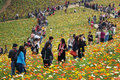 Chinese people spring outing located in poly shixiang lake sichuan china Stock Photo