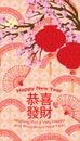 Chinese plastic round lantern hang cherry rainbow