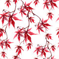 Chinese red maple leaves. Seamless pattern on white background. Watercolor Royalty Free Stock Photo