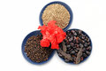Chinese Rose with set of beans,cumin and black pepper Royalty Free Stock Photo