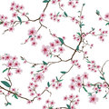 Chinese sakura white seamless vector pattern
