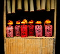 Chinese spirits Stock Images