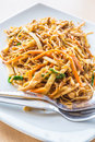 Chinese stir fried chicken egg noodle Royalty Free Stock Photo
