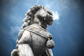 Chinese stone tiger guardian under blue sky Stock Photos