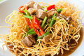 Chinese style deep fried yellow noodles with pork Stock Images