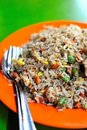 Chinese style fried rice Stock Images
