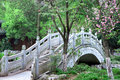 Chinese style stone arch bridge Royalty Free Stock Photo