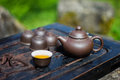 Chinese Tea Set In Garden
