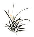 Chinese traditional distinguished gorgeous decorative hand-China, ink orchid Royalty Free Stock Photo