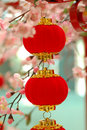 Chinese traditional red lantern 2 Royalty Free Stock Photo