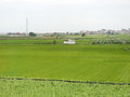 Chinese village beautiful scene of with green farm Stock Image