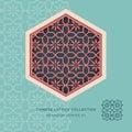 Chinese window tracery lattice hexagon frame series 01 flower pattern. Royalty Free Stock Photo