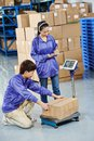 Chinese workers in warehouse young uniform with weight scales and box at warehousing system Royalty Free Stock Photography