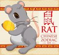 Chinese Zodiac Animal: Cute Rat with a Golden Coin, Vector Illustration Royalty Free Stock Photo