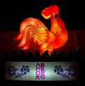 Chinese zodiac sign animal chicken one of animals symbolizes punctuality and responsibility Royalty Free Stock Photos