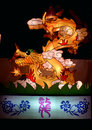 Chinese zodiac sign animal dragon one of animals symbolize emperor royalty and nobleness Stock Images