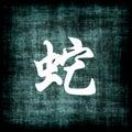 Chinese Zodiac Sign - Snake Royalty Free Stock Photos