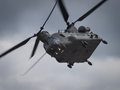 Chinook Helicopter Royalty Free Stock Photo