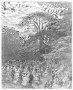 A chiswick fete picture from gustave dore s london pilgrimage illustrated book published in london uk Royalty Free Stock Image