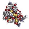 Chlorotoxin scorpion toxin peptide toxin present in deathstalke deathstalker venom blocks chloride channels atoms shown as spheres Stock Image