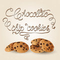 Choc chip cookies Royalty Free Stock Photo