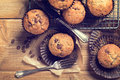 Chocolat chip muffins Photo stock