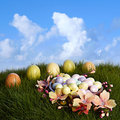 Chocolate Almond Candy Easter Eggs In Yellow, Pink, Purple &Blue Stock Images
