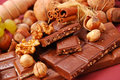 Chocolate bars with nuts and raisins Stock Image