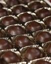Chocolate bon-bon in the box Stock Photo