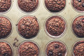 Chocolate bran muffins with cherries, in old, grunge looking, tin tray Royalty Free Stock Photo