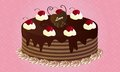 Chocolate cake with cherries lovely topping on pink background Stock Photo