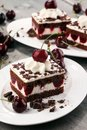 Chocolate cake with cherries and whipped cream. Black Forest cak Royalty Free Stock Photo