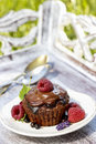 Chocolate cake with fresh fruits on wooden tray in the garden Royalty Free Stock Images