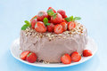 Chocolate cake garnished with fresh strawberries close up Stock Images