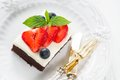 Chocolate cake pieces of with icing strawberry blueberry and mint on a plate Royalty Free Stock Photo