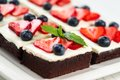 Chocolate cake pieces of with icing strawberry blueberry and mint on a plate Royalty Free Stock Images
