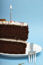 Chocolate cake a slice of choclate to celebrate the occassion Royalty Free Stock Photography