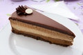 Chocolate cake slice on white plate Royalty Free Stock Image