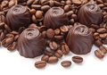 Chocolate candies coffee beans over white background Stock Photography
