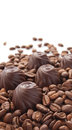 Chocolate candies coffee beans over white background Royalty Free Stock Image